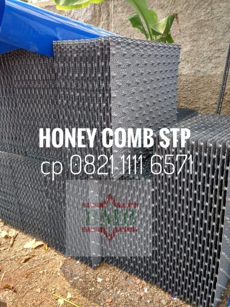 honey-comb-sarang-stp-cp-0821-1111-6571